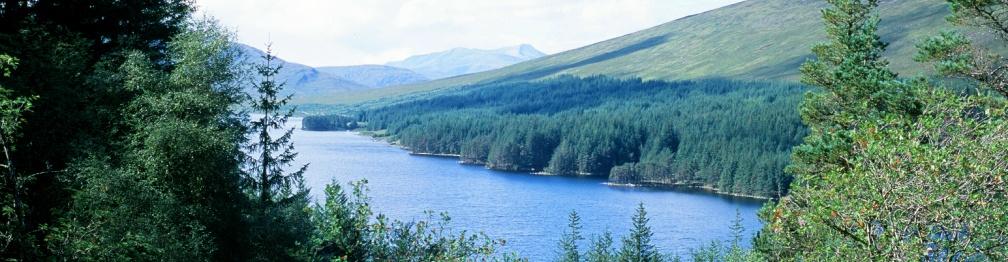 Corrour Forest Loch Ossian Scotland