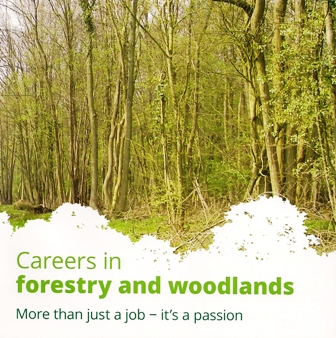 Careers in Forestry web