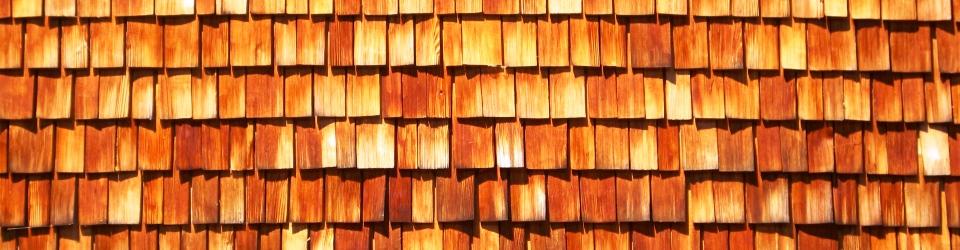 Cedar shingle wall, Eberswalde, Germany. Photo: E. R. Wilson 2015