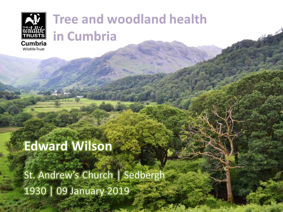 Tree and woodland health Poster 09 01 2019